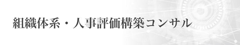 イマジンポケット 組織体系・人事評価構築コンサル